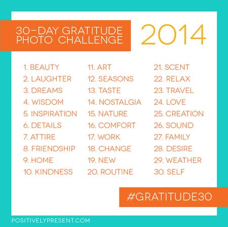 2014 Gratitude Challenge